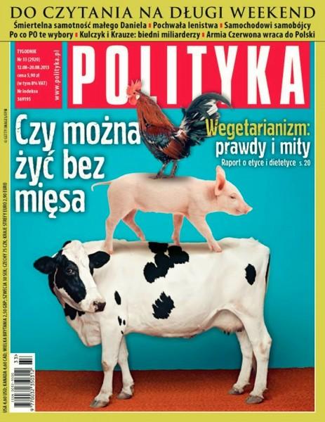 polityka332013