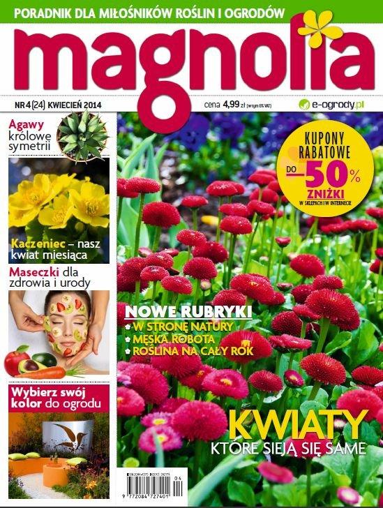 magnolia 4 2014