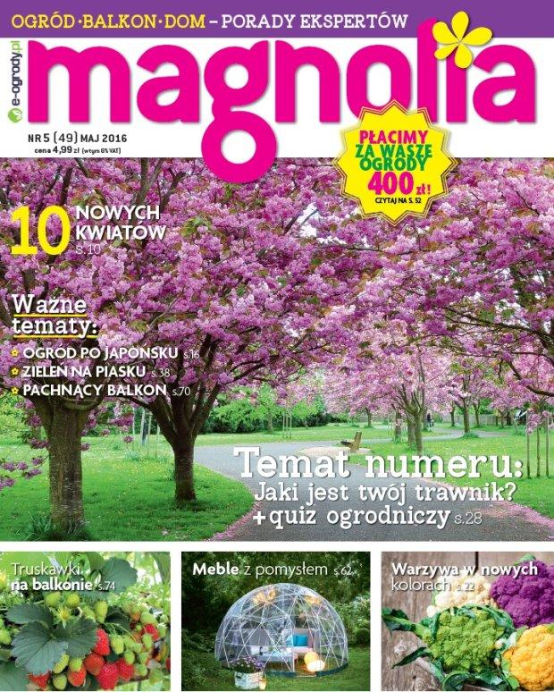magnolia 5 2016