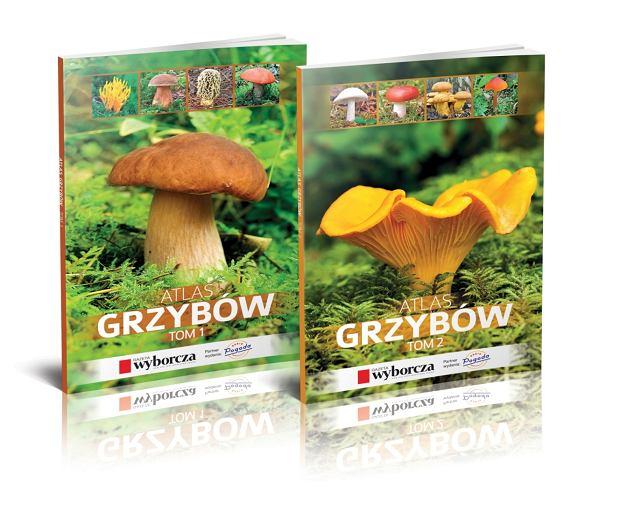 atlas grzybów GW