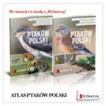 Atlas ptaków z kalendarzem